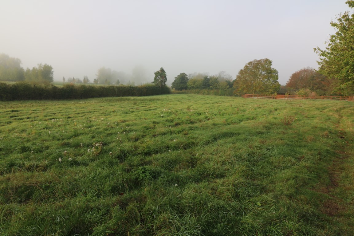 Paddock Land at The Manor, Birlingham - Click for more details